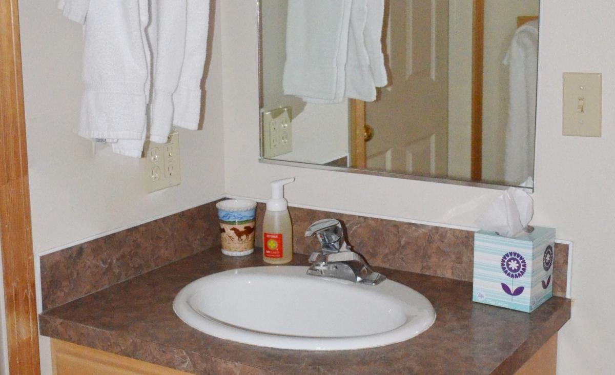Indian Creek Bathroom Sink