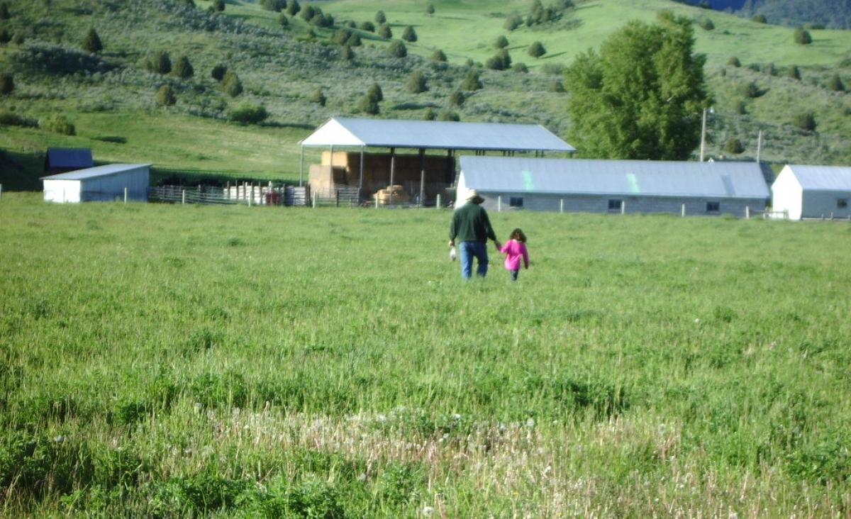Next Door Ranch