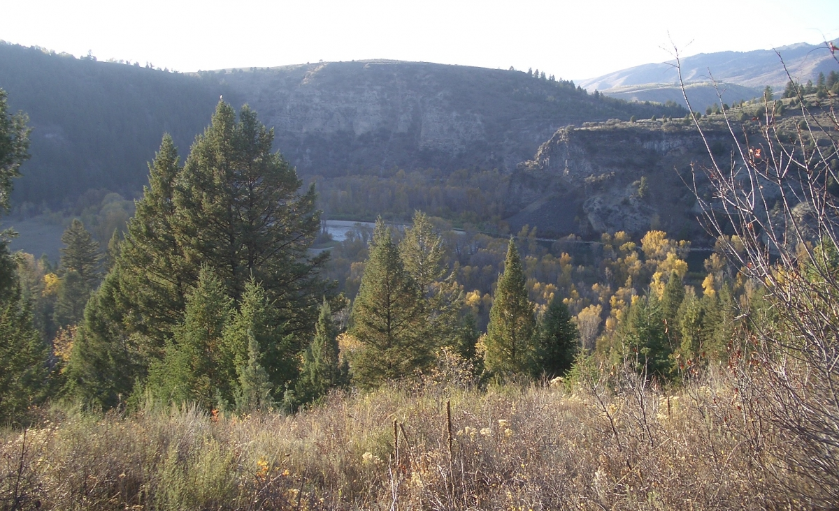 Soth Fork Canyon